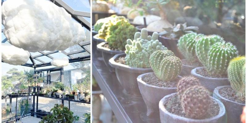 田尾景點_酉 Succulent & Artwork(捌程景觀園藝)│田尾熱門打卡景點,棉花糖雲朵圍繞的透明植氛~