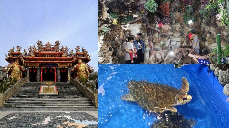 大義宮│澎湖西嶼景點,澎湖室內景點唯一合法飼養綠蠵龜的廟宇。