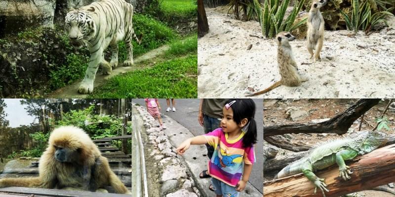 壽山動物園│高雄親子景點、高雄動物園,便宜的親子活動好去處!