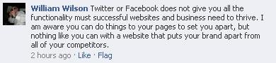 Social media replacing websites - Facebook discussion
