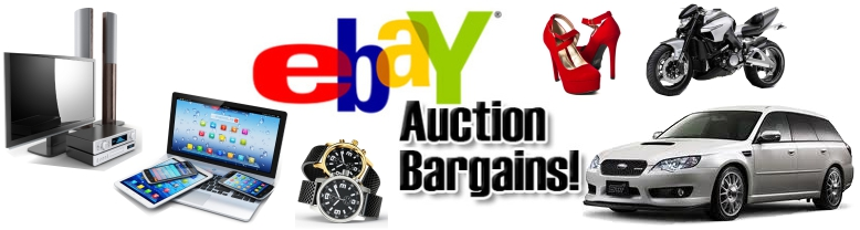Why do people try sell domain names on eBay? - www.nicenic.net