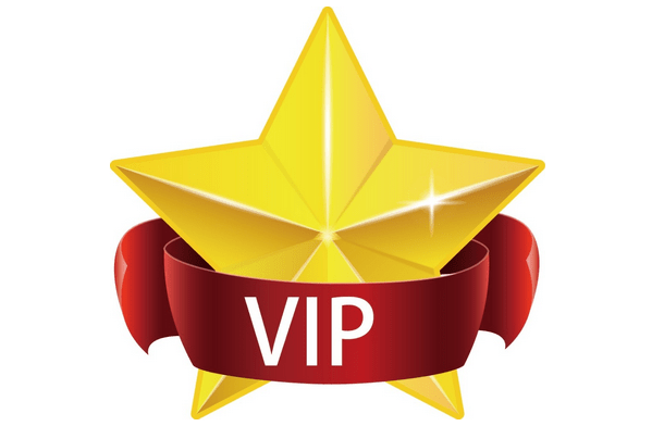 Chinese buy another 200,000 .VIP domain names - www.nicenic.net