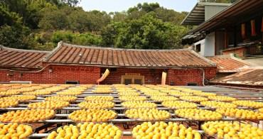 新竹新埔|秋季限定美景!古法曬柿子超美,金漢柿餅教育園區一日遊行程分享