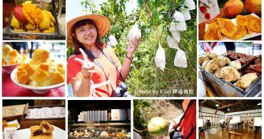 台南旅遊景點|漫遊玉井。採芒果體驗一日遊(蜜旺果果園到餐桌/玉井老街/黃金蕎麥)