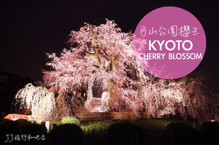 日本 關西京都賞櫻推薦!八阪神社円山公園櫻王,不能錯過的夜櫻景點
