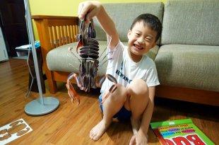 科學好好玩|Smart Kids IQ Box Sets|小動腦IQ自然百科遊戲盒(人體奧秘和蟲蟲世界)