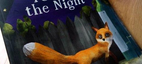 好少見的科學故事繪本 Fox in the Night 非常值得推薦共讀