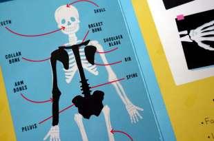 70個刮刮看 Scratch and Learn Human Body 我的身體刮畫書 還有《身體標籤書》