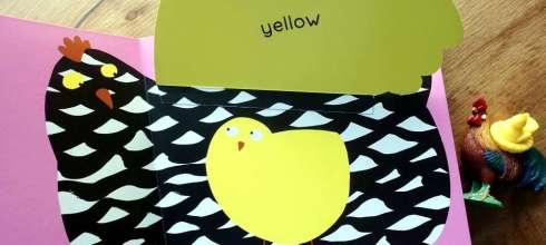 適合2Y以上,驚喜鳥翻翻書|Surprising Birds: Lift-the-Flap Colours |認識顏色書單