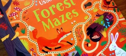 5歲以上適合的組織計劃力遊戲|Forest Mazes迷宫遊戲書(進階)|我們家的居家感統活動之一