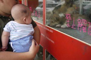 [育兒日記]新莊媽媽的店溜小孩-餐椅怎麼選?