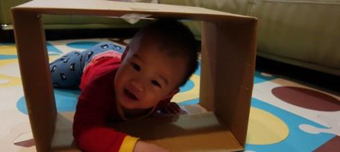 寶寶空間感的建立-積木、疊疊杯與DIY紙箱