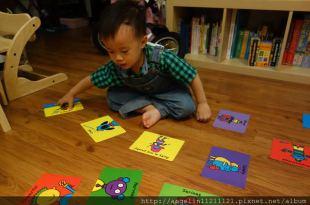 [同大爺私物] 適合2.5歲叛逆小人●Todd Parr Feelings Flash Cards感覺閃卡●