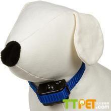 超聲波止吠器有用嗎 - 愛寵物咨詢網