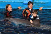 Delfinoterapia para combatir el autismo