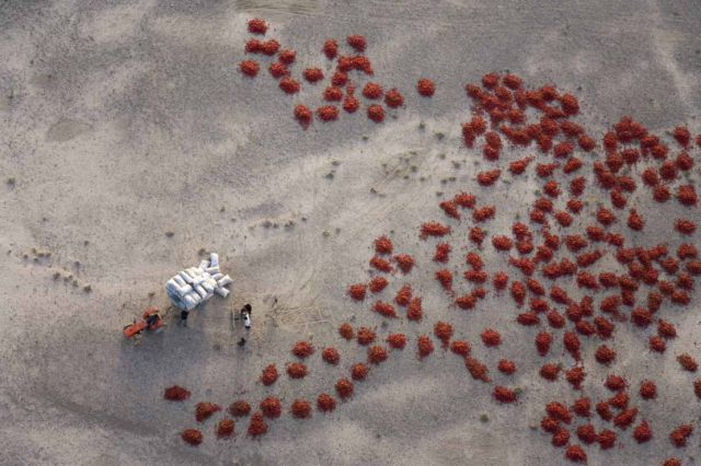 Incredible Photographs Taken from the Sky (79 pics)
