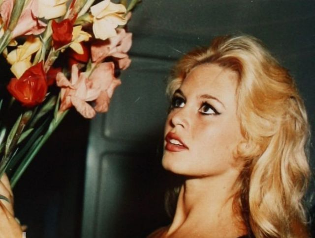 Brigitte Bardot Getting Older 16 Pics
