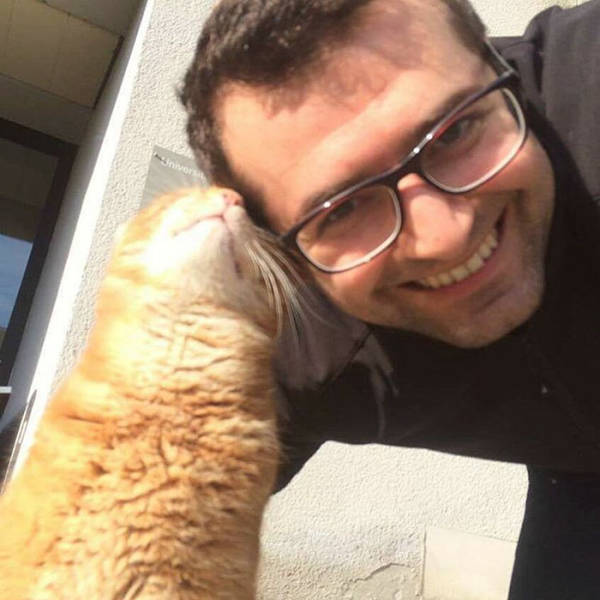 A Cat Comes To University Everyday To Give Out Hugs To Students