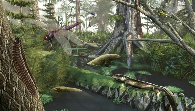 Why giant insects ruled Earth in the Carboniferous - Big Think