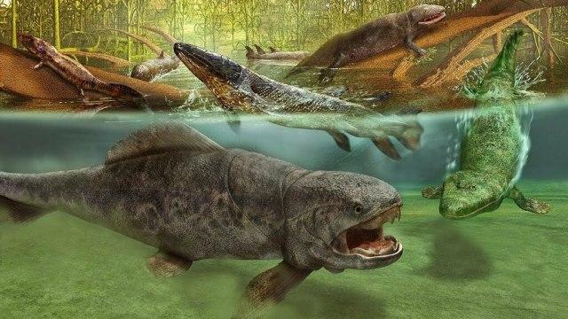 Dewon - epoka ryb, kręgowce zdobywają lądy, pierwsze lasy - Historia Ziemi #7 - YouTube