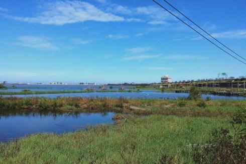 成龍濕地,捨不得離去的生態美景。