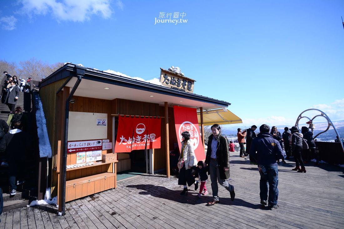 日本,河口湖,河口湖景點,天上山公園,纜車,富士山