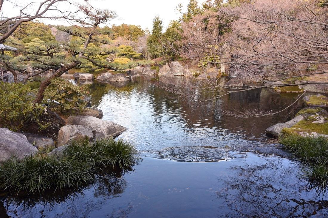 日本,兵庫,姬路,好古園,姬路城,姬路景點