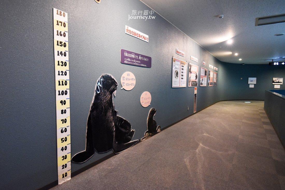 日本,青森,淺虫,淺虫溫泉,淺虫水族館