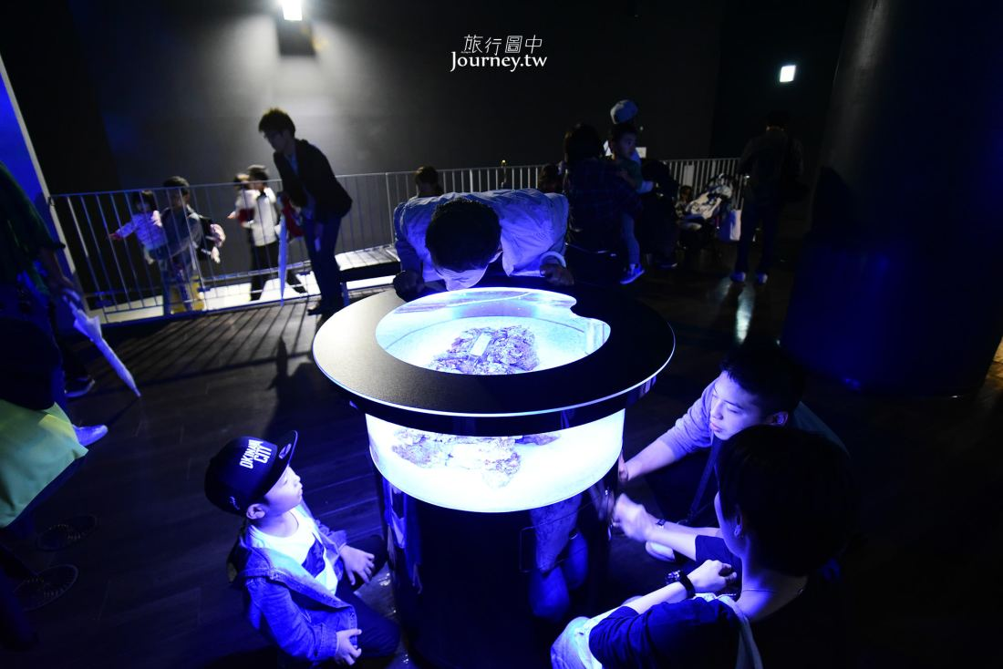 東京,品川,品川水族館