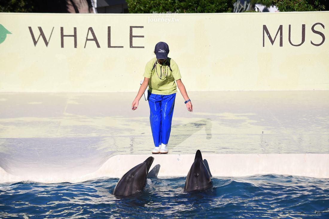 和歌山,太地,太地町立鯨魚博物館,太地町立くじらの博物館