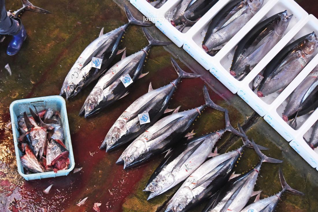 和歌山,那智勝浦,勝浦漁協地方卸売市場