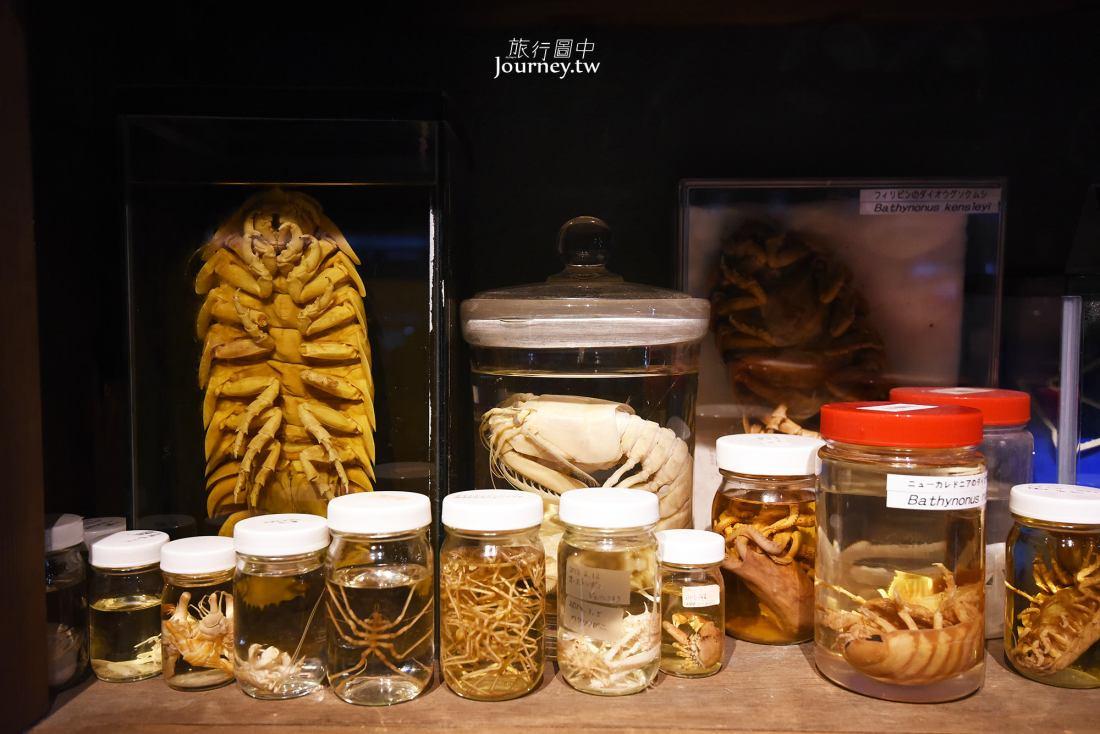 日本,三重,鳥羽.鳥羽水族館