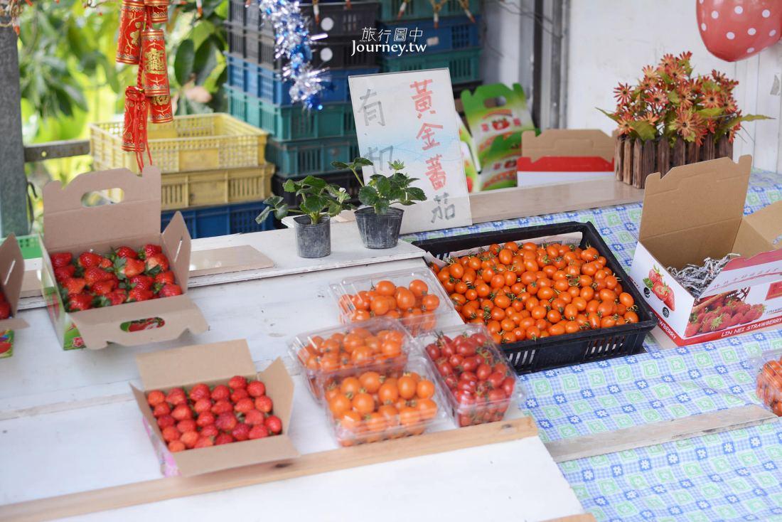 雲林,林內,林北村,草莓園