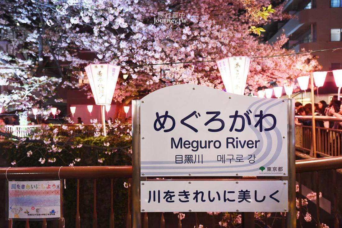 東京,中目黑,目黑川,夜櫻,東京賞櫻,景點,東京自由行