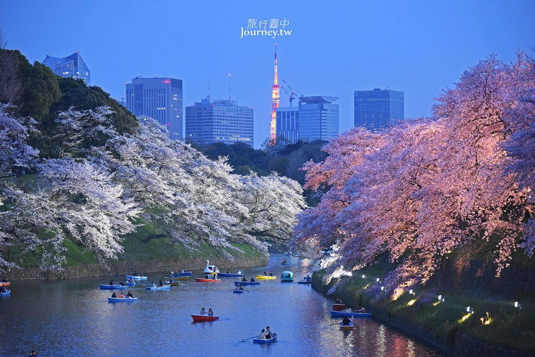 東京,九段下,千鳥淵公園,千鳥ヶ淵緑道,櫻花,賞櫻名所,日本,東京櫻花景點