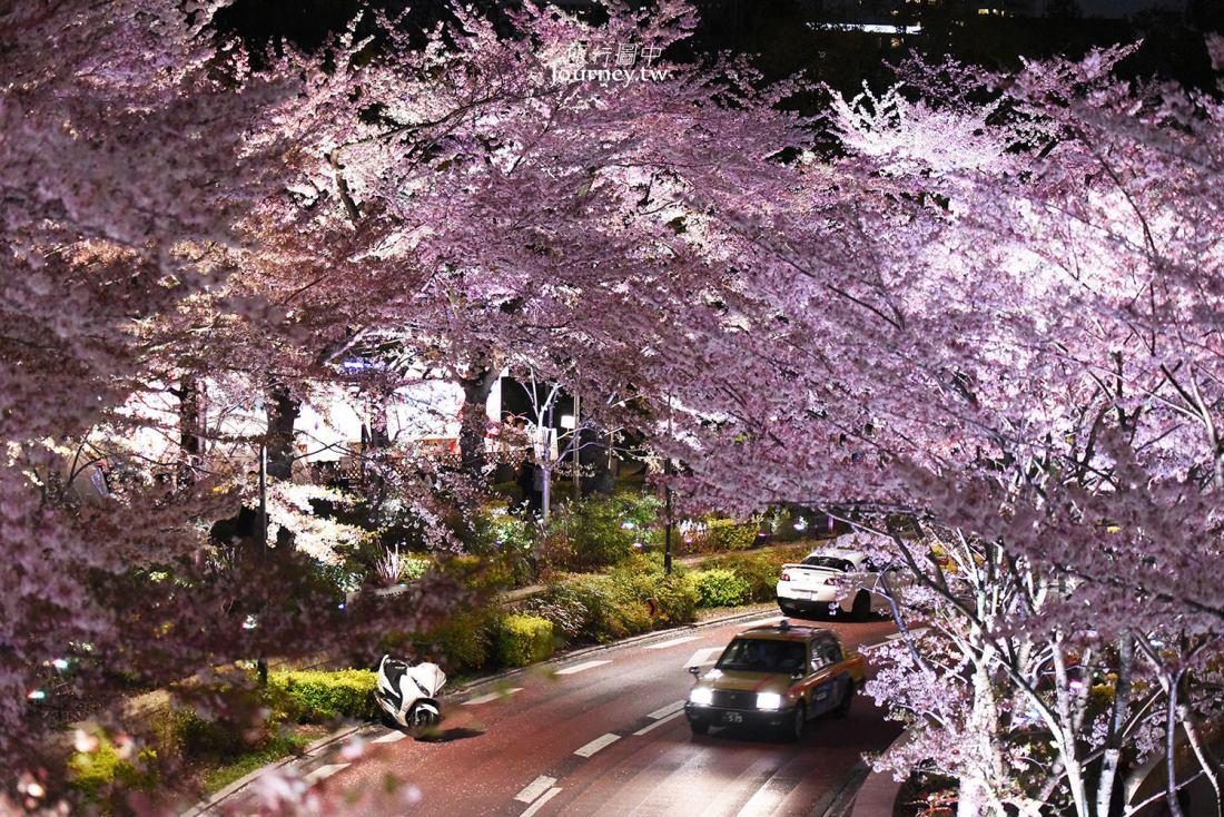 東京,六本木,東京中城,櫻花,東京ミッドタウン