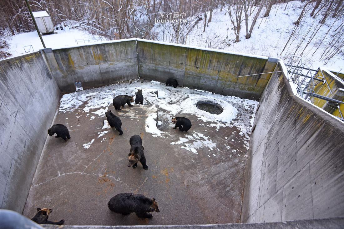 北海道,有珠,昭和新山熊牧場,北海道景點