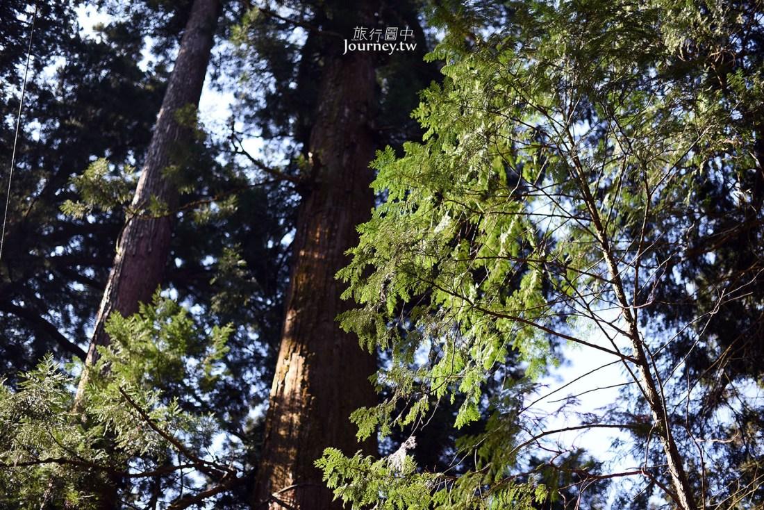 北關東,櫪木,櫪木景點,日光,日光東照宮,日光三猿,世界文化遺產