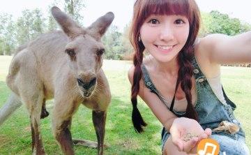 [ 澳洲布里斯本。旅行社 ]  華人飛行旅遊吧推薦 Fashion Tour ♥ 小Connie愛夢遊