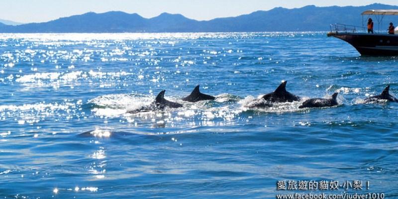 【日本長崎】口之津賞海豚,來去日本島原半島最南端,跟著野生海豚一起出海吧!