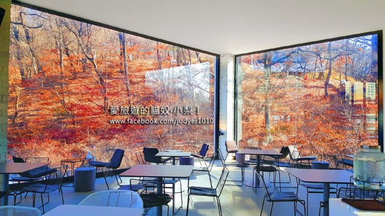 首爾京畿道美景咖啡廳\Smeltz咖啡廳,超大落地窗,讓人彷彿置身在森林裡!