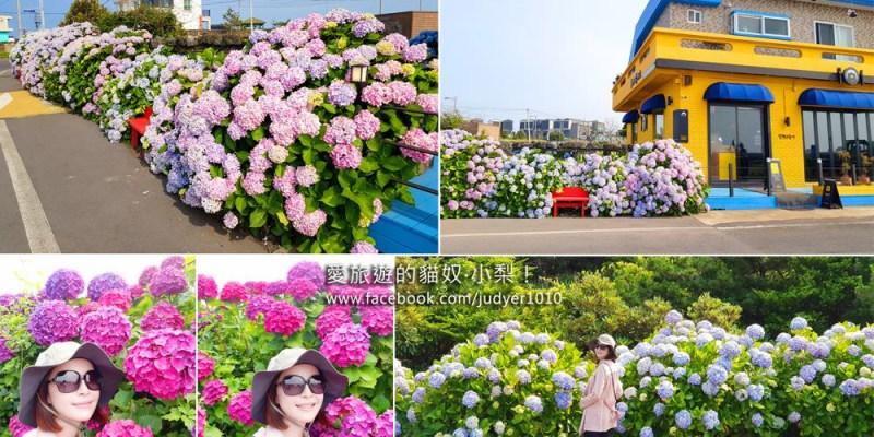 濟州島濟州市景點\終達里繡球花之路、下道里拍照點!
