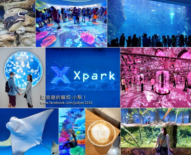 桃園景點\Xpark水族館:免排隊入場、必拍打卡熱點、Xpark詳細介紹