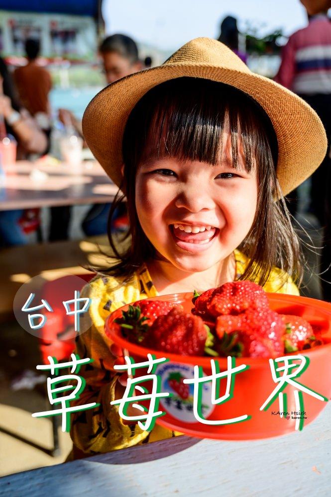 草苺世界 | 台中潭子親子遊,來採草苺