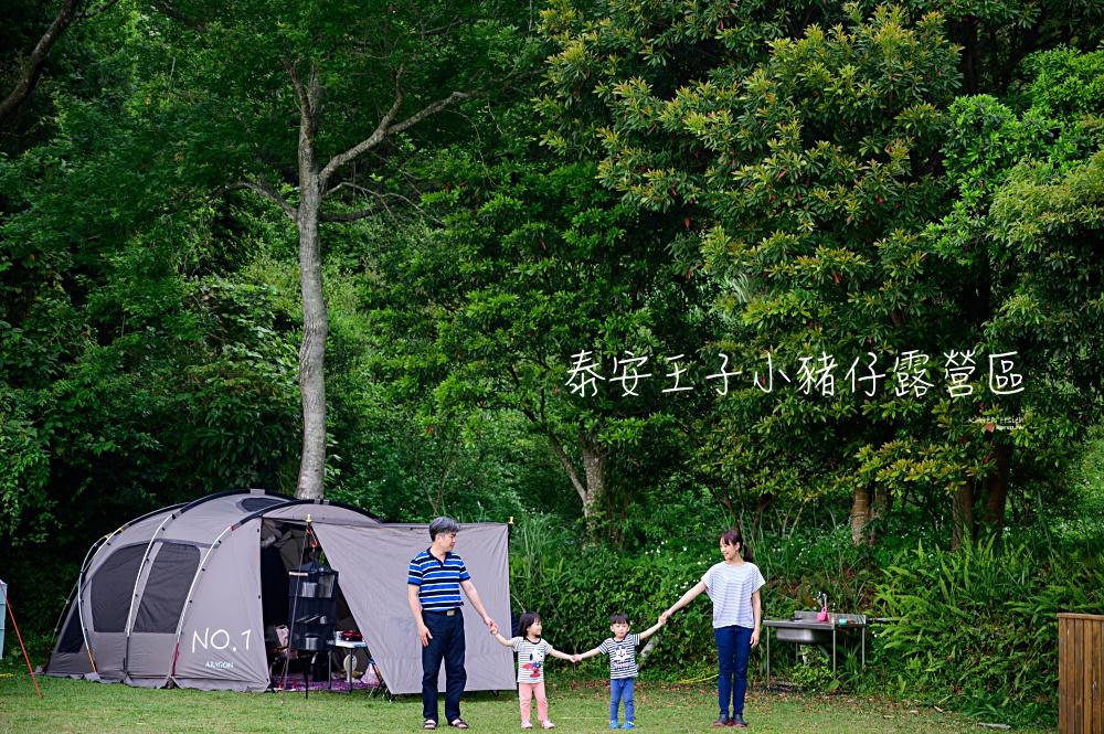 泰安王子小豬仔露營區 | 海拔750mm賞螢火蟲、採草苺親子露營區(NO.1)