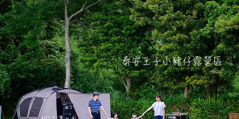 泰安王子小豬仔露營區   海拔750mm賞螢火蟲、採草苺親子露營區(NO.1)