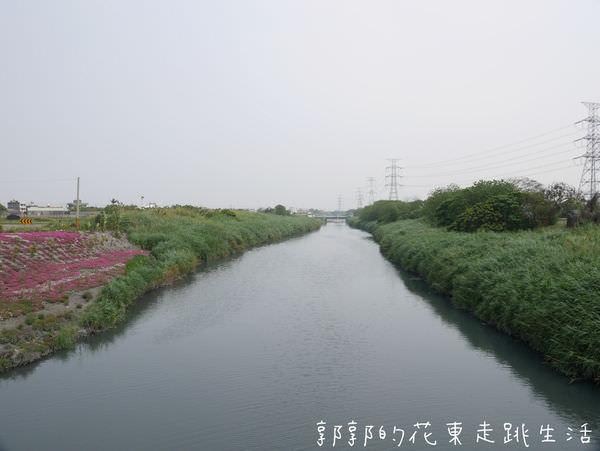 P1130155.jpg