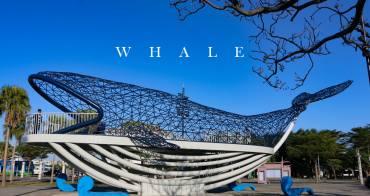 台南景點 大魚的祝福 乘載著台灣人的過去與未來