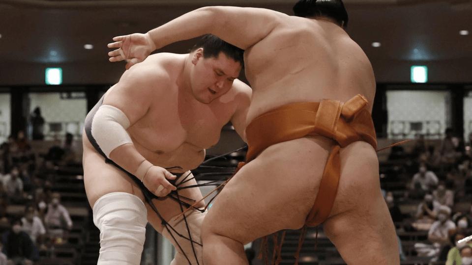 Sumo: Terno Fuji wins comeback tournament