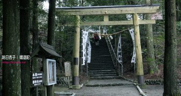 宮崎縣旅遊 | 蝦野市・白鳥神社 | 向千年靈地白鳥山樹齡五百年神木朝聖